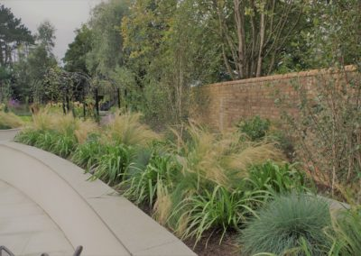 grasses birch borders bricks wall troon