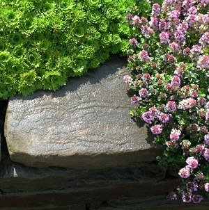 Traditional garden design, Ayrshire