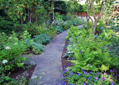 newly planted woodland path