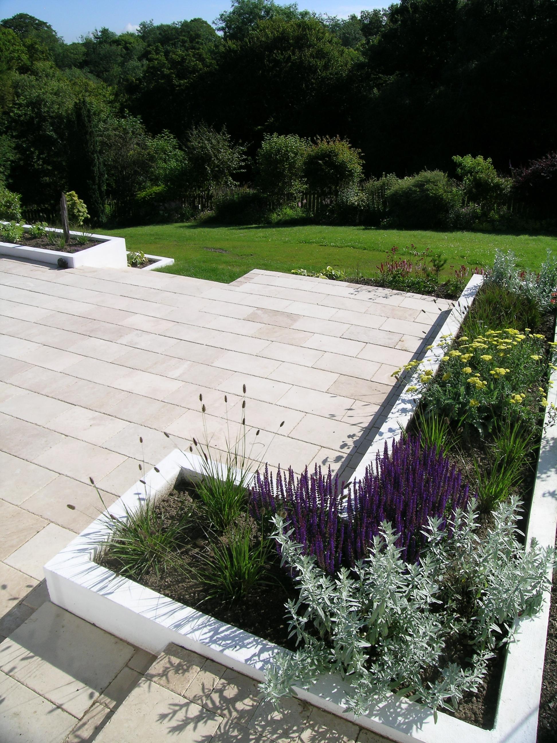 Glasgow suburban garden | Jeremy Needham Garden Designs